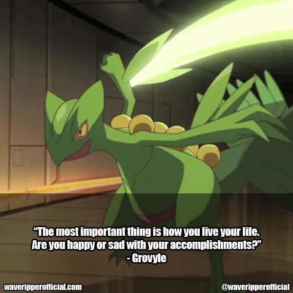 Grovyle quotes