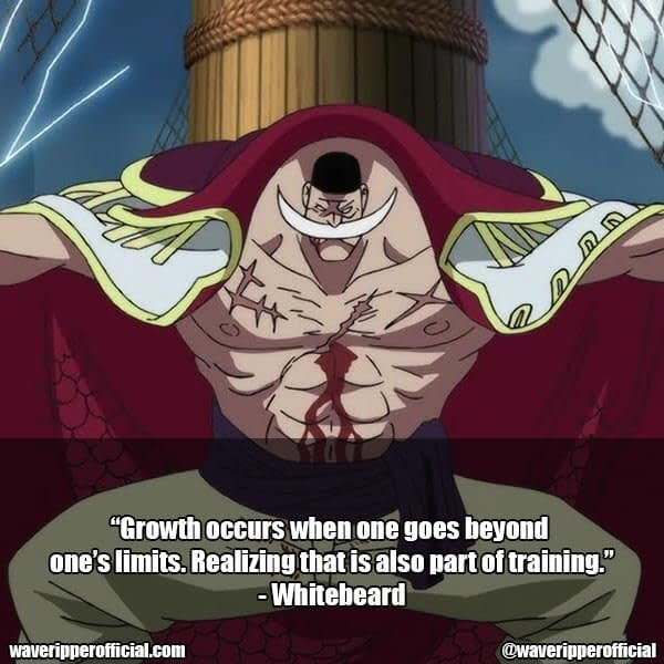 Whitebeard quotes one piece